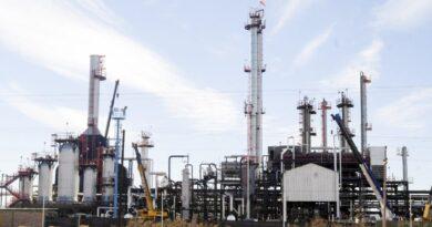 Vaca Muerta sostiene el incremento de la capacidad instalada en la industria